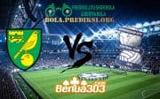 Prediksi Skor Norwich City FC Vs Birmingham City FC 19 Januari 2019