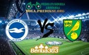 Prediksi Skor Brighton & Hove ALbion Vs Norwich City FC 2 November 2019